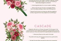 Wedding Planning Guide / Congratulations! You are planning a wedding and you need some helpful tips and tricks? Well here are some useful guides to helping you plan your wedding and to assist you in making those big decisions that are part of you have the perfect memorable wedding day!