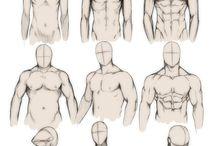 Drawing male anatomy / Male anatomy.
