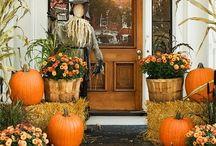 Halloween Decor / by Emily Davis
