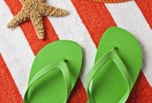 Sandbuckets & Seashells