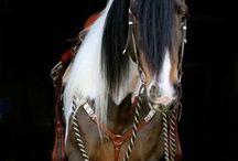 konie 2