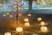 Halloween / by Journo Chic