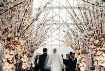 winter wedding designs / by Nicole Whitaker