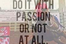 Everything Equine / Equine health, tips, grooming, training, tack, supplies, quotes, and products.  / by Farrah