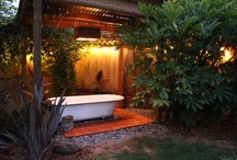 Inspiration for courtyard and garden