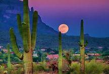 Arizona Nature / THIS is the beauty of Arizona.