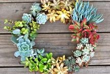 CREATE - Wreaths / by How to Nest for Less