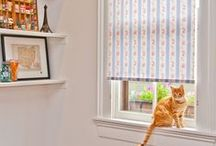 Apartment B Window Shades / Our Graphic and Pattern Shade Offering