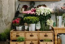 Store Floral Interiors