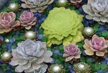 gardens I love / by Katrina R