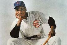 Chicago Cubs / by Brian McLaughlin