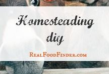 Homesteading DIY / Homesteading skills and projects to inspire. Homesteading for beginners and everyone in between. #homesteadingdiy