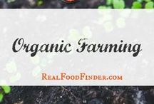 Organic Farming / Organic farming ideas for better health. Living the farm life #organicfarming