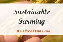 Sustainable Farming Practices / Sustainable farming homesteads that inspire. Sustainable farming ideas for better health and soil. #sustainablefarming