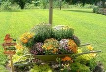 For My Yard & Gardens / by Laurel Blevins