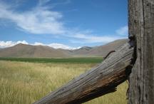 Lava Lake Ranch