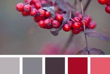 Colours & tones / It's all in the colour and tone.......it sets the mood.