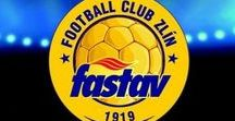 FC Fastav Zlín / FC Fastav Zlín, czech football, fotbal. Vukadinovič.