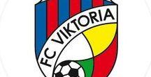 FC Viktoria Plzeň / FC Viktoria Plzeň, fotbal team, football, czech football. Limberský, Hubník, Petržela.