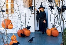 Halloween / My FAVORITE holiday! My husband and I throw an adult Halloween party every year so I will share what I've learned over the years about Halloween everything! Decor, food, costumes, and all the other must haves/knows.