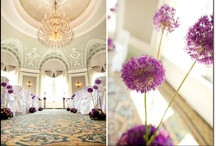 Wedding Decor / Wedding decor ideas from real weddings and online resources.  Including colour schemes, table numbers/names and reception entrances.