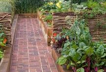 Garden Inspirations / Eye candy for the garden lover, this contains amazing ideas for gardening to help sew a greater return.