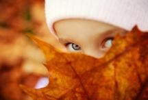 :: Autumn Memories :: /