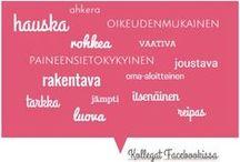 Curriculum Vitae / Kulttuurin ja viestinnän sekatyöläinen valmiina uusiin haasteisiin keväällä 2015! Katso lisää: www.emminuorgam.com