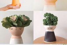 Ceramics :: Cerámica