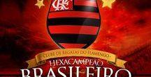 Fla Brasileiro 2009 / Flamengo Campeão Brasileiro de 2009