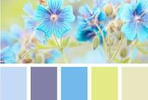 Colour Palettes / Filled with colour palettes to inspire me