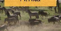 Afrika // Safaris und Reisen / Afrika ist ein faszinierender Kontinent! Hier findest Inspiration und viele Tipps für deine Reise ins südliche Afrika - ob Rundreise, Safari oder Roadtrip.