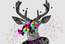 ANTLER MODERN / by Catherine Maroussis