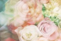 Flowers are xx / Floral Communication.   http://bit.ly/MexxWomen / by Mexx