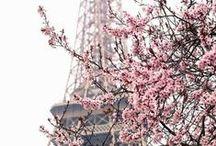 Season / Spring feeling