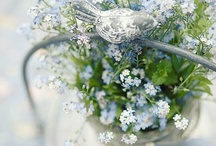 Spring❀Inspirations / by Marta Spring