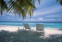 Life's a beach - so lets go / My happy place 🌴 / by Lisa Cloward