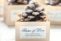 Fall Wedding Ideas / Fall wedding theme, colors, flowers, decorations, favors.