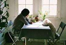 dogs / by Natalia Sumina