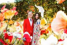 Colourful Weddings / Colourful Weddings