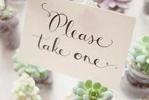 Wedding Plan   Favors Ideas / Wedding Plan   Favors Ideas