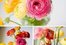Flowers / by Lea Guarino