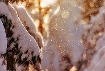 Winter ❄️❄️ / Winter the Christmas season ⛄️