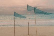 Home ~  Sea/Beachy/LilMermaid/Nemo Bathroom