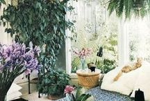 Design for Growth / home and garden