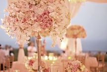 Wedding Themes - Blush Pink