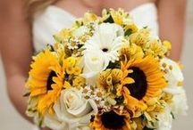 Wedding Themes - Yellow