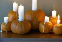 Halloween / by Megan Judd