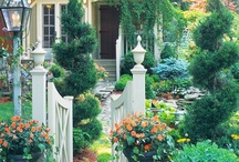 Garden Design, Whimsy and Wishes / by Martha Coye