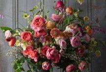 Flowers / inspiring florals